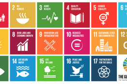 Business Action on the SDGs