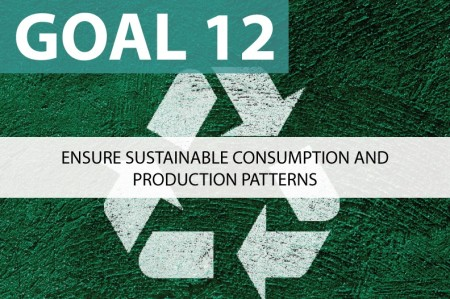 responsible consumption and production examples