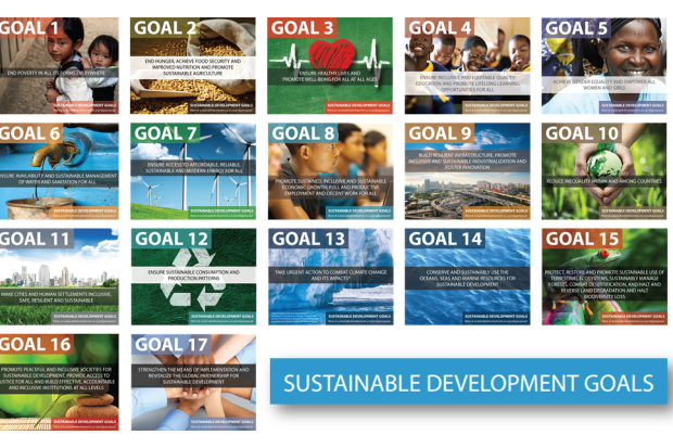How Businesses Can Contribute to the SDGs: Webinar